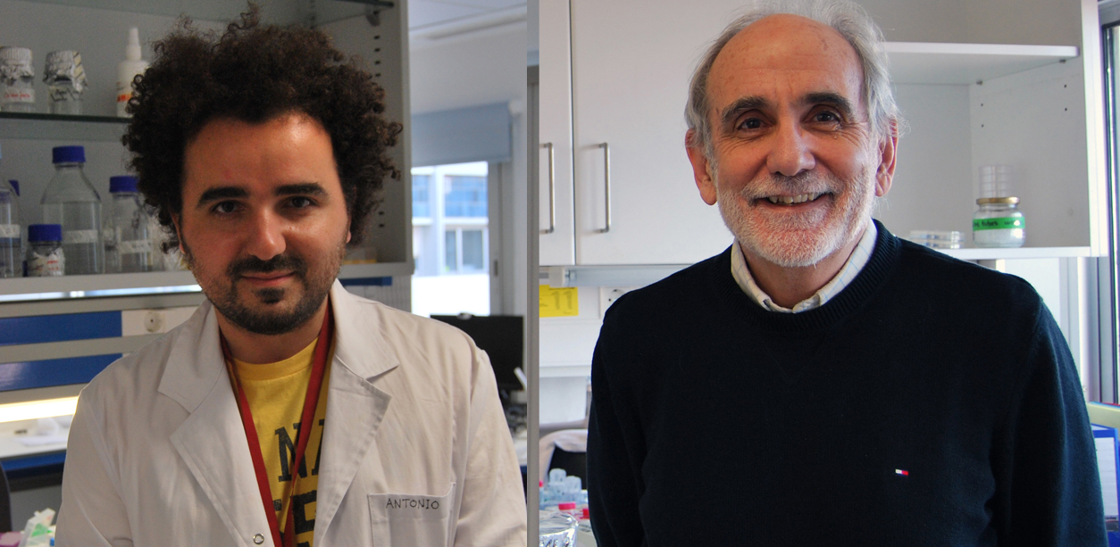 foto Drs. Gentilella and Thomas