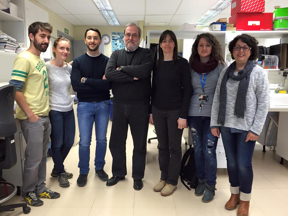 foto IDIBELL researchers led by Dr. Isabel Fabregat
