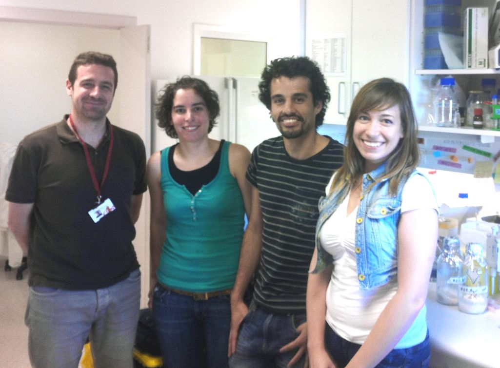 foto IDIBELL team that has been working in this research: Juli�n Cer�n, Montserrat Porta de la Riva, David Aristaz�bal and Laura Fontrodona